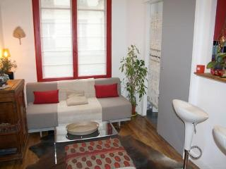 Beautiful 1BR for 4 / Rue des Tournelles - apt 927 - Paris vacation rentals