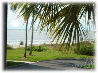 Sundial, Magnif  Beach and Gulf View -  Low  Rates - Sanibel Island vacation rentals