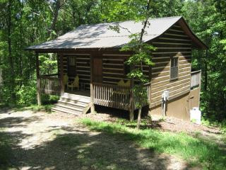 Sweet Retreat Cabin - Helen vacation rentals