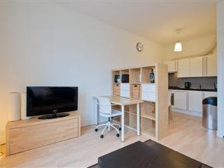 Congress Centre Apartment B2 - Holland (Netherlands) vacation rentals