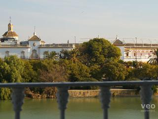 Betis No. 2 | 2-bedrooms, river views, parking - Seville vacation rentals