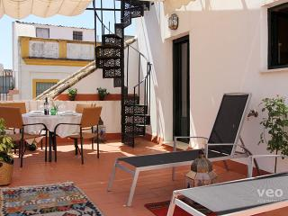 Cuna Terrace | Split-level apartment large terrace - Seville vacation rentals