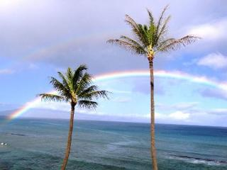 Beautiful Sunsets From Right Here - Lahaina vacation rentals