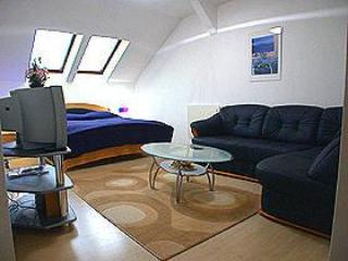 Lovely Penthouse Apartment near center of Vienna - Vienna vacation rentals