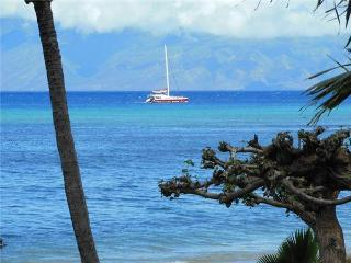 Sands of Kahana #315 - Lahaina vacation rentals