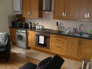 Two Bed Apartment, 12mins from Central London - London vacation rentals