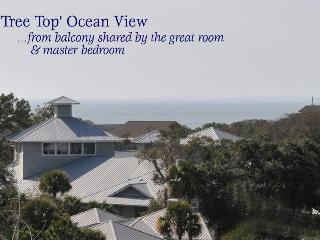 504 & (new!) 505 North Shore Place- Across from Beach! 2B/2B - Hilton Head vacation rentals