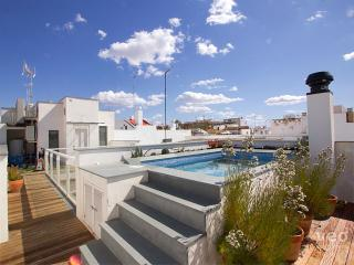 Teodosio Terrace | Superior duplex with pool - Seville vacation rentals