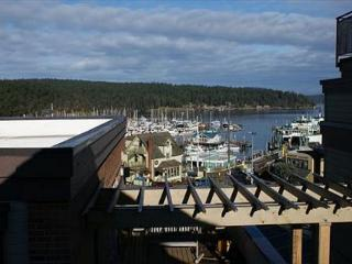 Churchill Plaza #4 - San Juan Islands vacation rentals