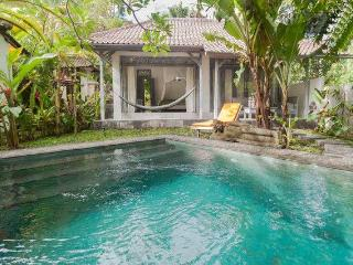 Romantic Cottage With Private Saltwater Pool - Ubud vacation rentals