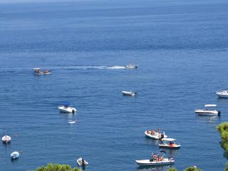 Villa of the sea - Taormina vacation rentals