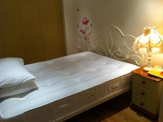 5* serviced apartment in central London 1bed 1bath - London vacation rentals