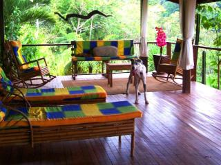 Breathtaking NBC-TV Lodge Jungle/Spring Fed Pools! - La Fortuna de San Carlos vacation rentals