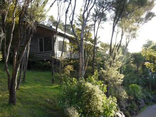 Spacious Studio Apartments - Paihia vacation rentals
