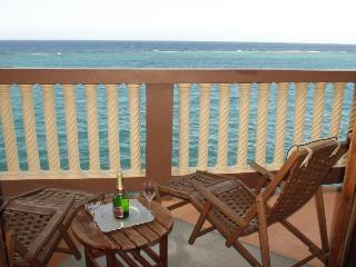 Beautiful 2 or 3 bd/m Oceanfront Villa near O/Rios - Ocho Rios vacation rentals