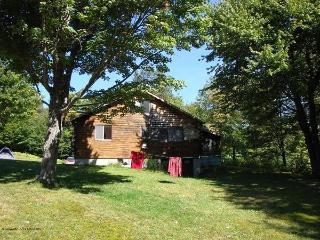 3 BR Cabin - sleeping porch lake trails playground - Ludlow-Okemo Ski Area vacation rentals