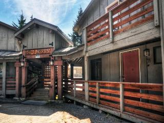 Edelweiss #4 - Government Camp, Fireplace, Dogs OK - Mount Hood vacation rentals