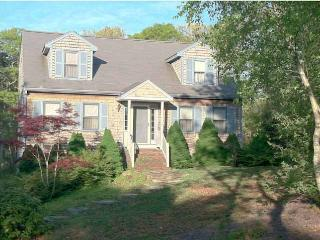4 Bedrooms (sleeps 10) 5 A/C's & WiFi - BR0461 - Brewster vacation rentals
