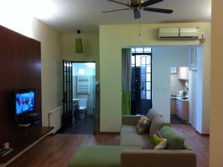 Chic studio flat in the heart of French Concession - Shanghai vacation rentals