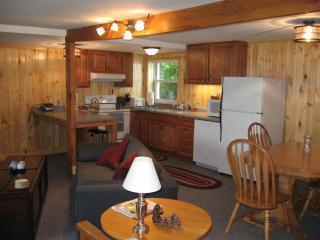 The Lake Cottage on Mariaville Lake - Pattersonville vacation rentals