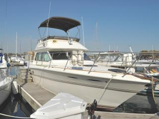Pier Gold - B & B Boatel - For Chicago get-a-ways - Illinois vacation rentals