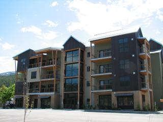 Upscale Condo, Full Kitchen, Continental Breakfast - Kellogg vacation rentals