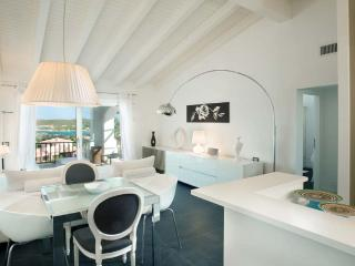 2 BD, 1 BR Luxury Apartment in Porto Cervo - Porto Cervo vacation rentals