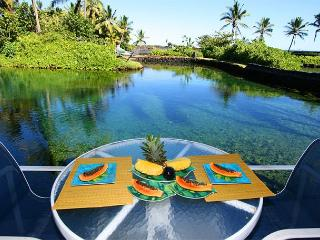 Lagoon House - Huge Private Snorkeling Aquarium! - Kapoho vacation rentals