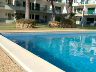 T1+1 Vilamoura Apt  w/ direct Pool & Garden access - Vilamoura vacation rentals