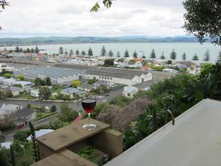 Bellbird  Bed and Breakfast in the heart of Napier - Hawke's Bay vacation rentals