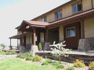 ALEGRIA - Pagosa Springs vacation rentals