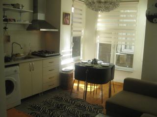 New,Quality,Central flat in Taksim - Istanbul vacation rentals