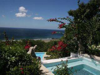 Full Service Casually Elegant Resort Inn/Home - Nicaragua vacation rentals