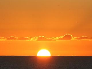 Ocean & Sunset Views, Walk to Beach. - Cardiff by the Sea vacation rentals