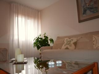 Tiziano apartment - Friuli-Venezia Giulia vacation rentals