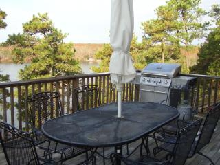 Perfect Vacation  Home - Sheep Pond  Brewster - Cape Cod vacation rentals
