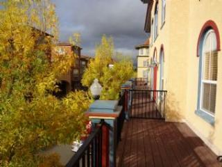 Wine Country Townhouse - California Wine Country vacation rentals