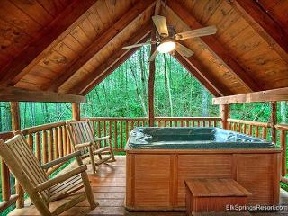 Private and Secluded 1 Bedroom  with Seasonal Stream - Gatlinburg vacation rentals