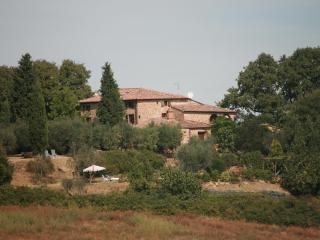 Gli Oppi;SE of Siena 12-16p villa;big pool+gardens - Trequanda vacation rentals