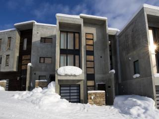 Niseko  luxury home 3-4 bedrooms - Niseko-cho vacation rentals