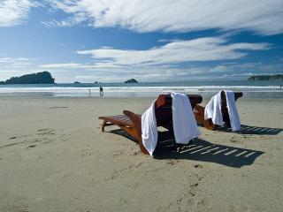 Located Directly on the BEACH!! Daily Monkey visits! - Manuel Antonio vacation rentals