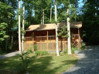 Granny's Cabin - North Georgia Mountains vacation rentals