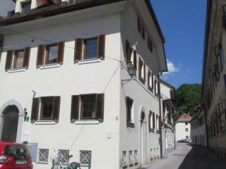 studio apartment in the centre of Ljubjana - Ljubljana vacation rentals