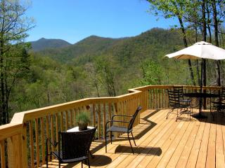 Cold Mountain Cabin - Waynesville vacation rentals