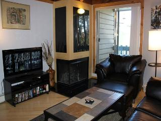 TH103C Lovely Condo w/Wifi, Clubhouse, Mountain Views - Silverthorne vacation rentals