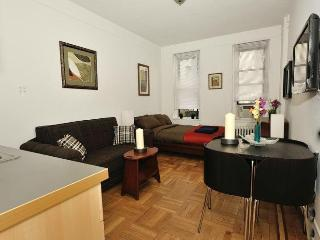 Quaint Upper East Manhattan Studio #8348 - New York City vacation rentals