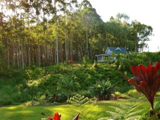 Creekside Cottage with ocean views, 20 acres - Hilo vacation rentals