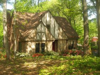 Beautiful 5BR 4 BA Lakefront Home sleeps 12 - Smith Mountain Lake vacation rentals