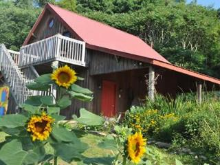 The Barn at On the Windfall Farm - Lansing vacation rentals