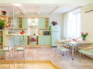 Royal Stay Group Apartments (205) - Minsk vacation rentals